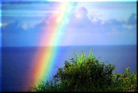 rainbow004.jpg